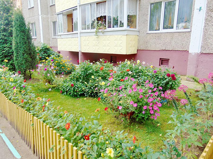 Во всех жилых домах Новополоцка созданы домовые комитеты, фото-2