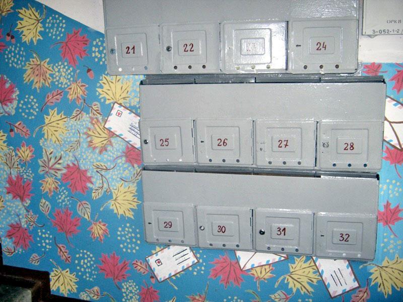 Во всех жилых домах Новополоцка созданы домовые комитеты, фото-4