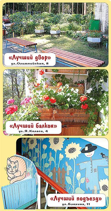 Во всех жилых домах Новополоцка созданы домовые комитеты, фото-6