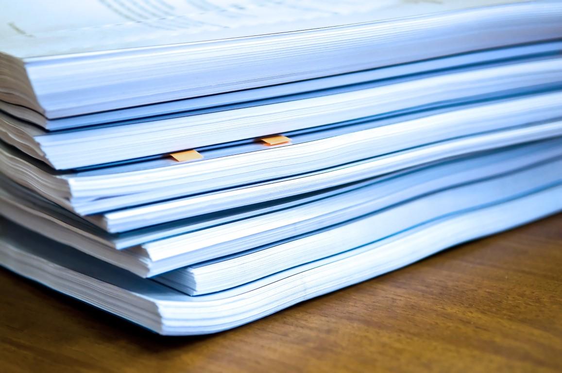 Свыше 900 новых субъектов хозяйствования воспользовались льготами Декрета №6 в Могилевской области