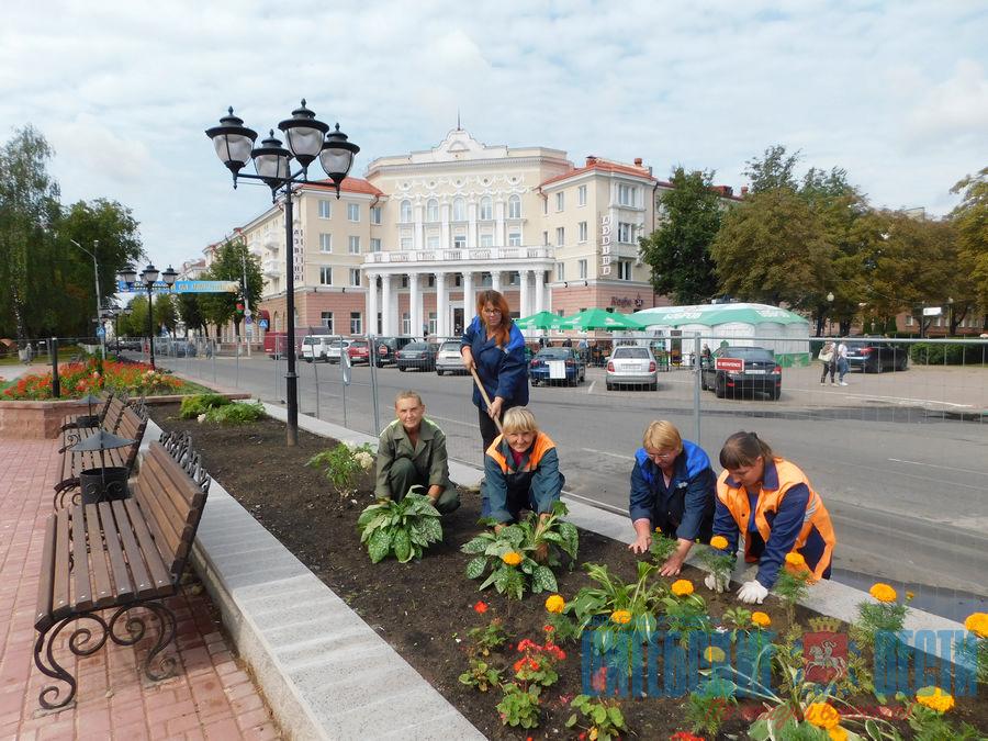 полоцк новый фонтан скорина день города
