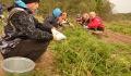 Студенческие отряды помогают сельхозпредприятиям Витебского района на уборке овощей
