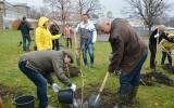 Первые весенние субботники начали проходить в Витебской области