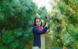 Десятки оттенков зеленого: чем славится дендросад в Глубокском районе?