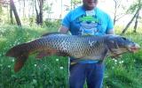 Сазана рекордных размеров поймал участник слета рыболовов-подводников в Браславском районе