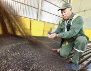 Витебский маслоэкстракционный завод возобновил выпуск подсолнечной и соевой продукции