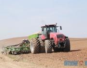 В Витебской области зерновые и зернобобовые культуры посеяны почти на 60% площадей