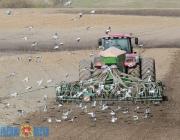 Витебская область приступила к севу ранних зерновых и зернобобовых культур