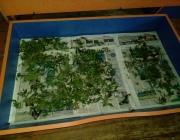 Житель Новополоцка спал на марихуане