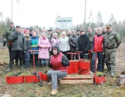 Более 500 га леса посадили на Витебщине в рамках Недели леса