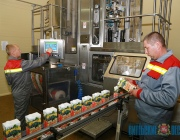 Нектар из крыжовника впервые будет выпускать Толочинский консервный завод
