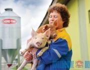 Израильская компания построит свиноводческий репродуктор в Лиозненском районе
