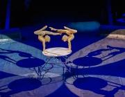 Оршанская студия отмечена на Международном детском фестивале циркового искусства в Киеве