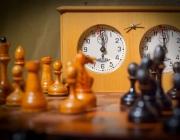 11-летний оршанец занял 3-е место во взрослом турнире по шахматам
