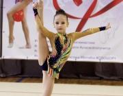 Около 200 юных гимнасток разных стран боролись за «Кубок северной столицы» в Витебске