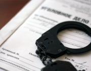 О громких преступлениях, раскрытых следователями области, рассказал Владимир Шалухин