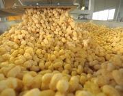 Докшицкий хлебозавод начал выпускать глазированные кукурузные палочки
