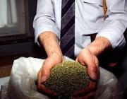 За сбыт наркотиков витебчанин осужден на два года лишения свободы с отсрочкой