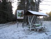 Лучшие лесхозы и лесничих выбрали в Витебской области
