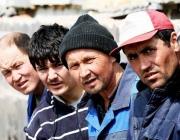 Канал по переправке афганцев-нелегалов в Литву пресечен в Поставском районе