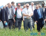 Серьезный разговор об упущениях в животноводстве провел с главами районов  председатель облисполкома в Орше
