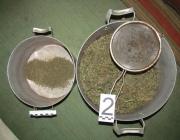 В Полоцке оперативники изъяли крупную партию марихуаны