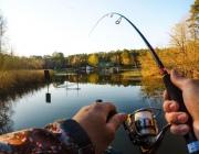 В Витебской области запрещена ловля любой рыбы до 8 июня