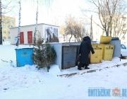 Отдельные контейнеры для отслуживших новогодних елок устанавливают некоторые жильцы в Витебске