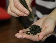 В Орше у студента колледжа нашли более 16 кг «насвая»