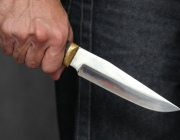 В Толочинском районе пенсионер ударил ножом водителя автобуса и убежал в лес