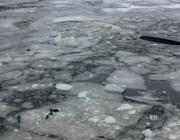 В Шумилинском районе второклассник провалился под лед и утонул