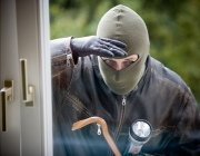 Кражи составляют около половины всех преступлений, фиксируемых в Витебской области