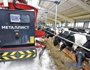 Китайская корпорация готова инвестировать миллионы долларов в создание молочно-товарных ферм в Витебской области