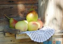 В эти выходные на Шарковщине отпразднуют «Яблочный Спас»