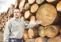 Сербско-белорусское предприятие в Сенненском районе сделало из заброшенной территории современное производство