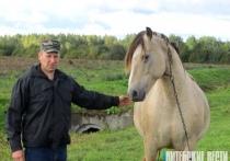 Потомственный фермер из Поставского района Андрей Девятовский: «Хозяйство кормит меня и приносит стабильный доход»