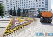 Средства, собранные в Витебске на субботнике, направят на озеленение и благоустройства города