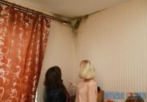 Дело плесень. Около полугода витебчанка ждет, когда подрядчик устранит строительный брак в ее квартире
