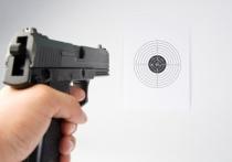 Что нужно знать владельцам пневматического оружия: от покупки до правил использования