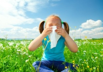На вопросы об аллергии у детей и взрослых ответят медики во время  «прямой линии»