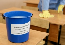 В учреждениях образования Витебской области усилены профилактические и дезинфекционные меры