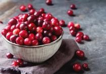 Почему клюкву считают самой полезной и незаменимой в холодную пору ягодой?