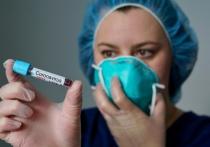 Какие меры принимаются в Витебской области по предупреждению распространения коронавируса?