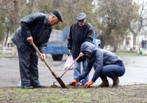 Общегородской субботник пройдет в Витебске в эти выходные