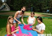 Около 200 школьников отдохнут этим летом в лагере «Нива» в Толочинском районе