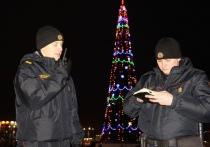 Милиционеры рассказали, какие травмы получили жители Витебщины во время новогодних праздников