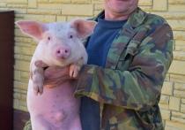 Свиновод из Лиозненского района Андрей Боборнёв рассказал, как помогает семье и стране обеспечивать продовольственную безопасность