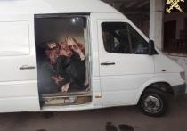 Витебские таможенники пресекли незаконное перемещение более 2,5 тонн говядины