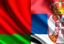 Власти Новополоцка получили письмо дружеской поддержки из сербского города-побратима