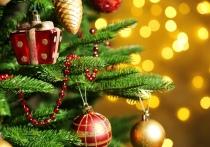 Улетная елка и новогодний прием у пана Лисовского. Чем удивит Полоцкий район на праздники?